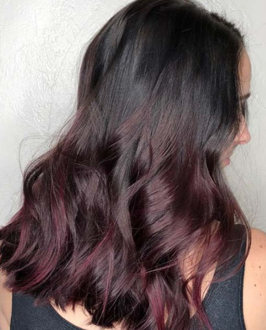 erik rengi saç renkleri 2019