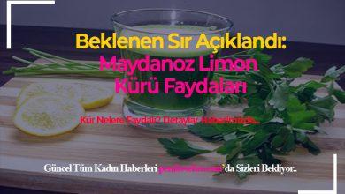 Photo of Maydanoz Limon Kürü Faydaları