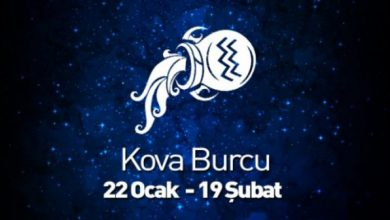 kova-640x336